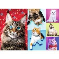 Puzzle 1000 - Wesołe koty