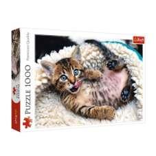 Puzzle 1000 - Wesoły kotek