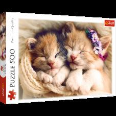 Puzzle 500 - Śpiące kotki