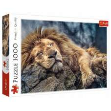Puzzle 1000 - Śpiący lew